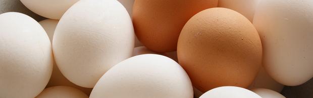 Cysteine Foods Rich Cysteine Food Sources